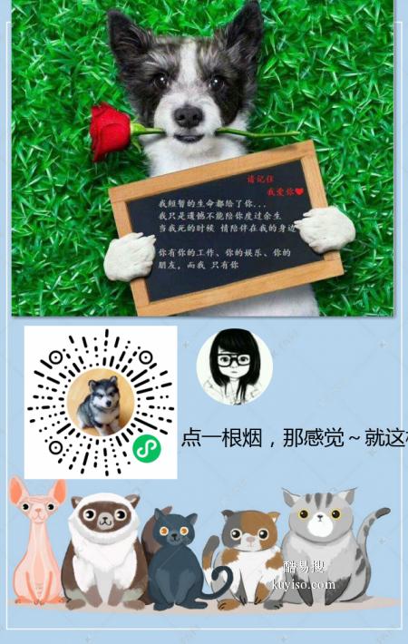 廣西南寧寵物松樹林樹葬服務
